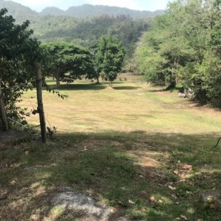 4 ACRES OF BEAUTIFUL RESIDENTIAL LAND FOR SALE MARACAS ST. JOSEPH FOR SALE