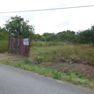 Wallerfield- 6 Acre Farm – $2.5M