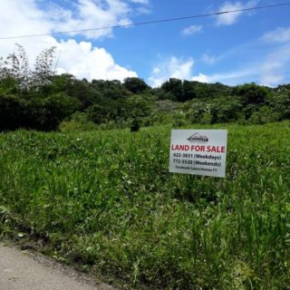 Sangre Grande/ Manzanilla LAND FOR SALE