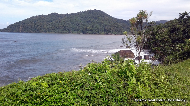Grand Riviere Land for Sale