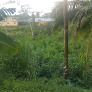 Cumuto Main Road – Land for Sale