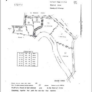 FREEHOLD FLAT LAND FOR SALE IN GUANAPO
