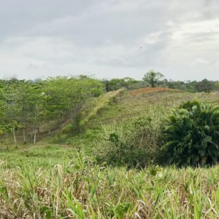 Las Lomas Land FOR SALE