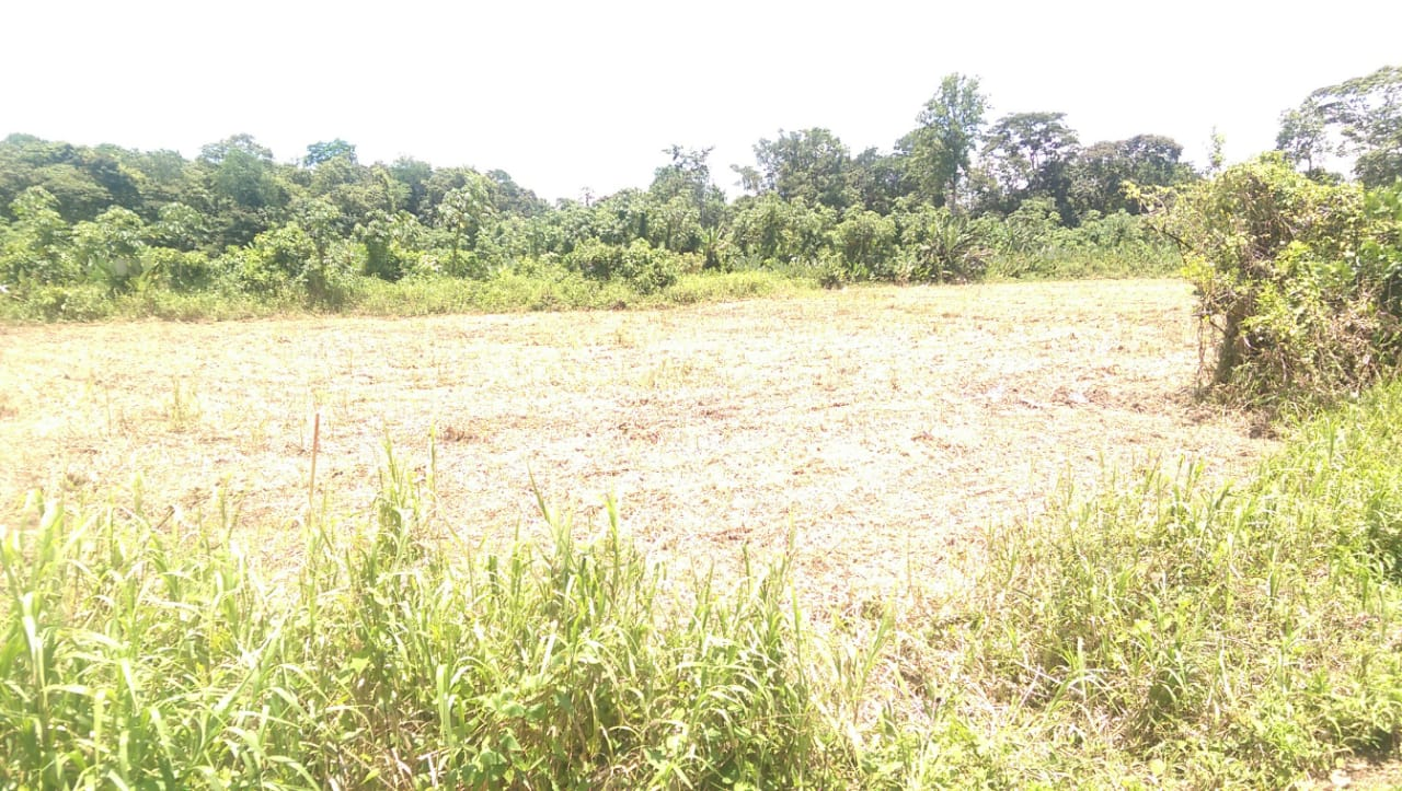 Rio Claro Cunapo  Residential Land For Sale