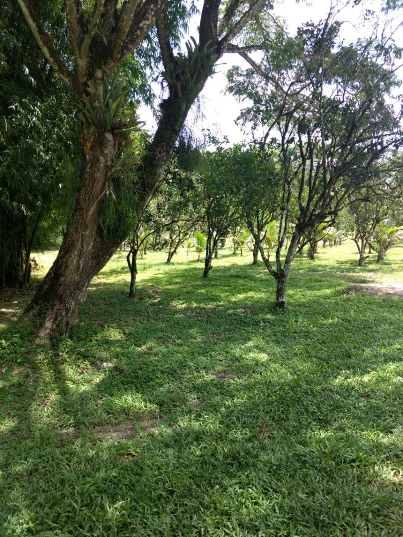 TALPARO MUNDO NUEVO 105 ACRES AGRICULTURAL LANDS