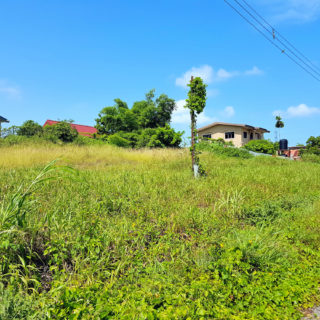 Residential Land, Gasparillo