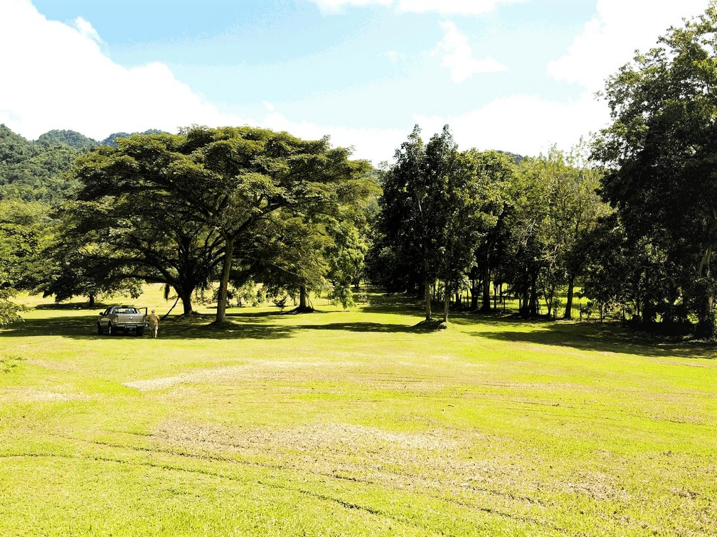 Maracas Valley Land – 4+ acres of lovely, rolling pasture freehold land with planning permission
