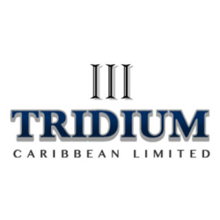 Tridium Real Estate Services