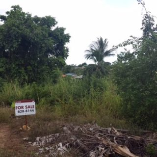 Lot 3 Branch Street, Williamsville – $530,000