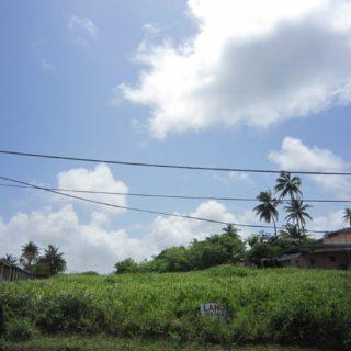 Lot 65 Mohammed Estate, Manzanilla – $250,000