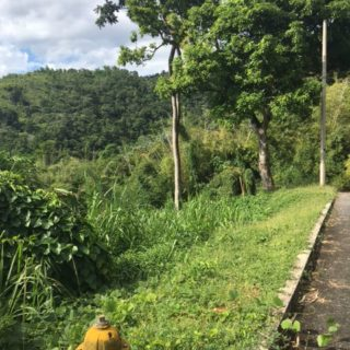 Percy's Place, Carenage – $1,500,000