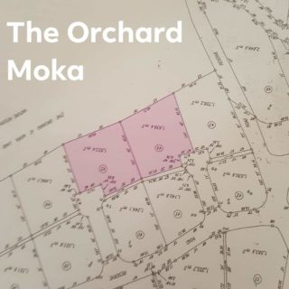 Land for Sale – The Orchard, Moka