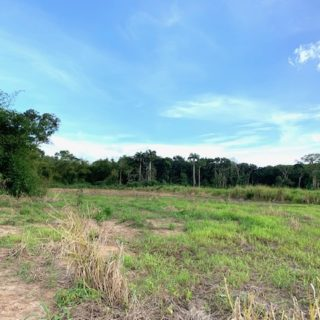 OFF SCHOOL ROAD, PALO SECO LAND for SALE!