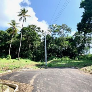 Land For Sale – OFF ALL FIELDS BRANCH ROAD, TAMARIND PARK, TOBAGO