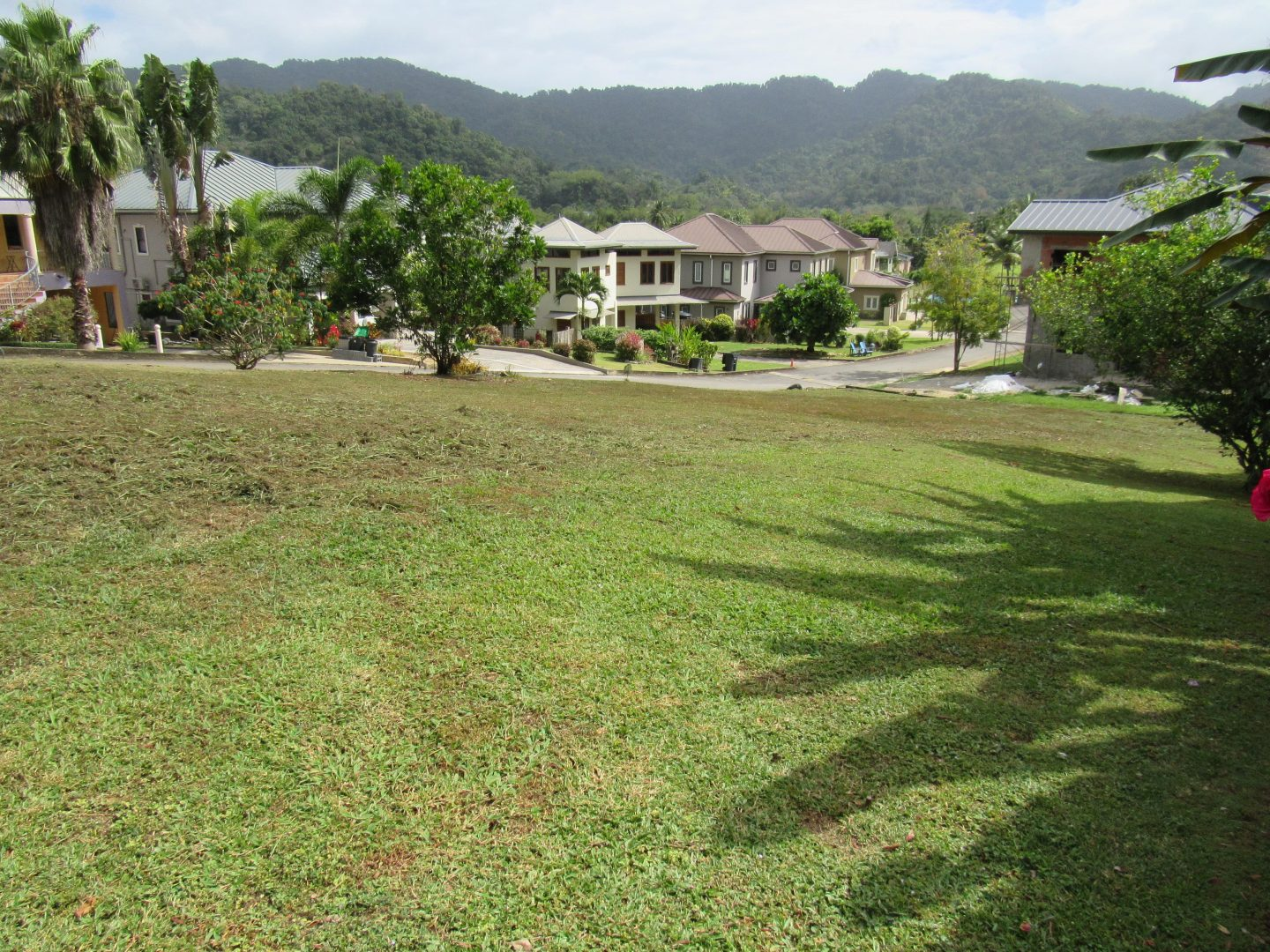 Santa Cruz Land for Sale – Valle Verde