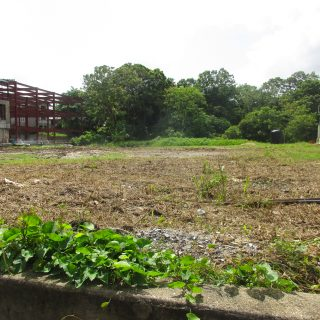 Land in Freeport for Rent
