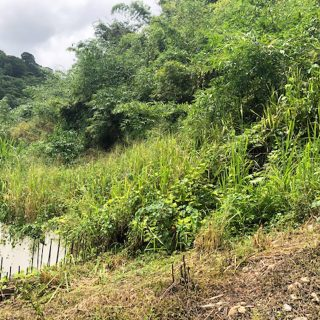 Residential Land For Sale in Maraval