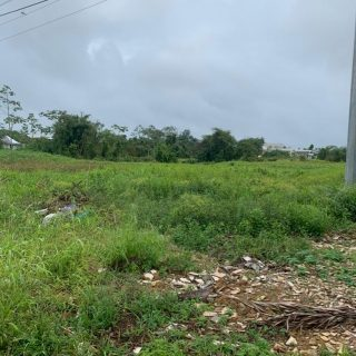 Land for sale on Sir Solomon Hochoy H/Way