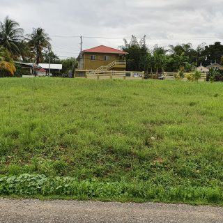 Large parcel of land for sale off the BWIA Boulevard, Piarco.