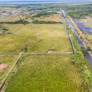 9.9 Acres Freehold Agriculture Land For Sale