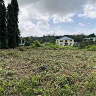Land for Sale – Palmiste – Block 8