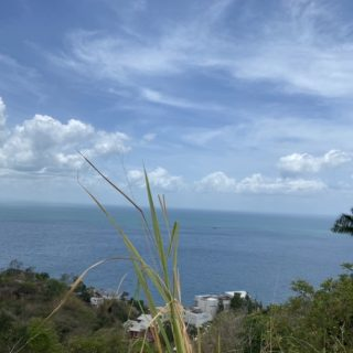FOR SALE – THE BUOYS, LAND