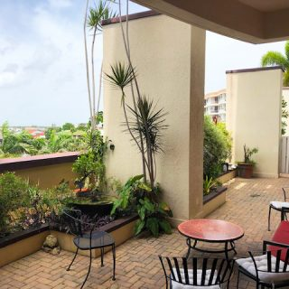 One Woodbrook Apartment For Sale / Rent
