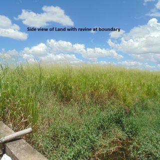 Agriculture land: 2 Acres leasehold in Couva, Exchange 2