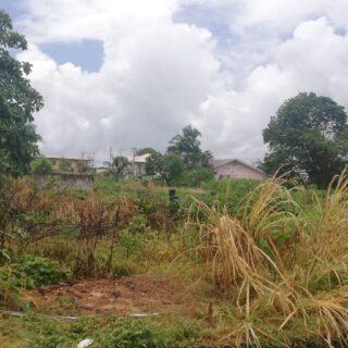 Red Hill D'Abadie 6,000 sq ft Land: $475,000.00