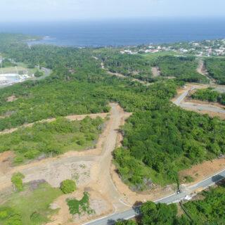 Land For In Tobago