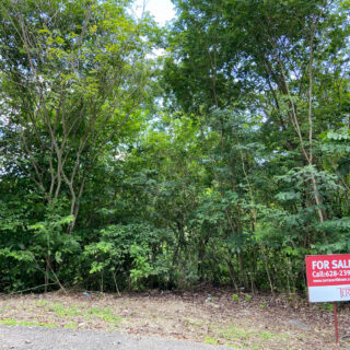 Land for Sale in The Orchard Maraval