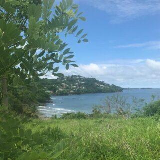 Land for Sale, Hope Estate- Tobago