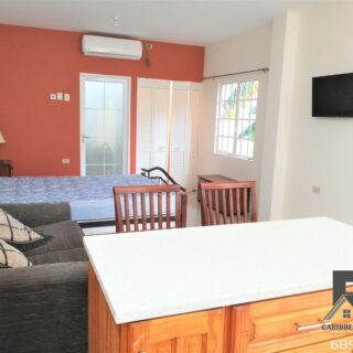 Cozy Studio Apartment – Fully Furnished – $3,000