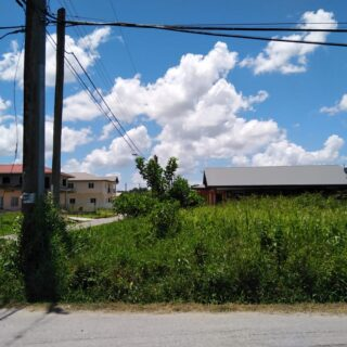 KELLY VILLAGE, CARONI LAND FOR SALE