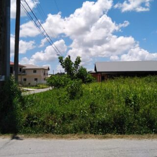 KELLY VILLAGE – TWO ADJOINING FREEHOLD LOTS FOR SALE!!!