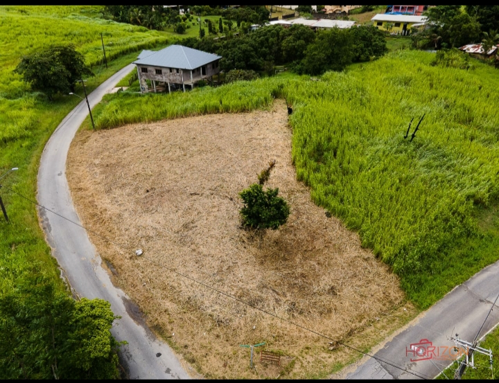freehold land for sale las lomas