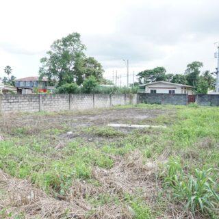 Tunapuna Land