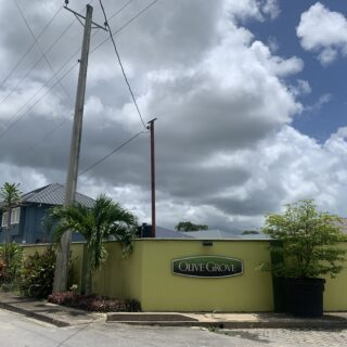 Land for Sale- Olive Grove, Couva