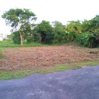 Land for sale- freehold , Fyzabad