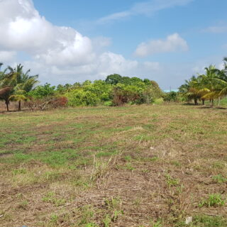 Land For Sale – Piarco – With approvals