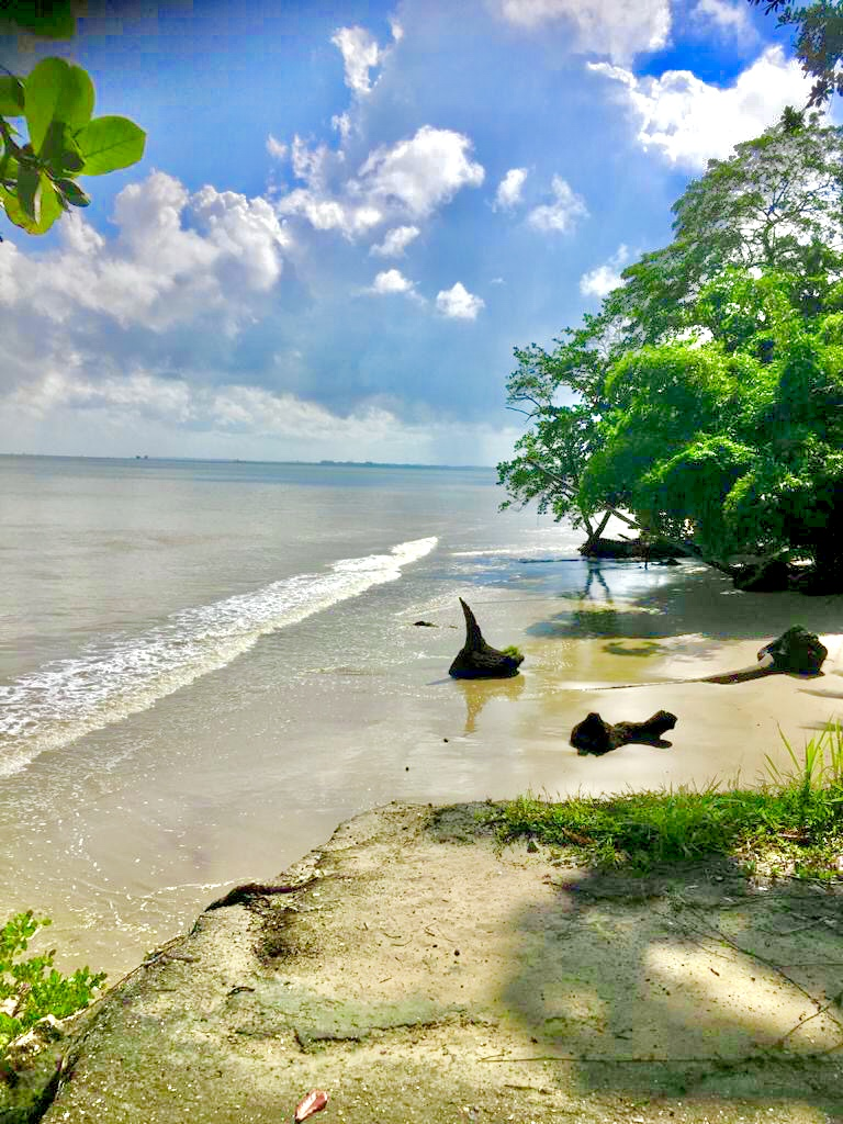 Beach Front Freehold Land for Sale, Pt Cocoa, Granville