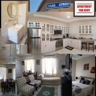 Modern Belmont Circular Road apartment for rent short term