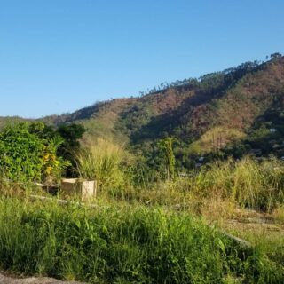 Land For Sale – Hololo Mountain Road Cascade – With approved house plans