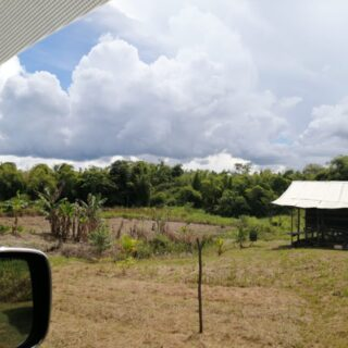 FOR SALE: 133 ACRESOF AGRICULTURE LAND AT PRINCESS TOWN