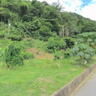 For Sale – Susconusco Road, Santa Cruz – Freehold Land