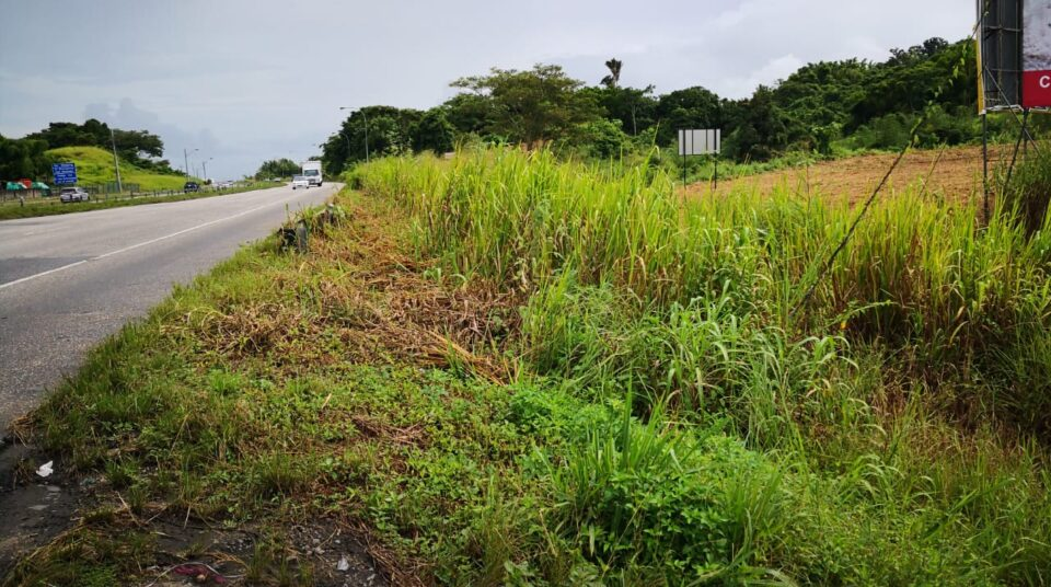7.5 Acres along the South Bound Lane of the SH Highway- Claxton Bay
