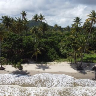 Beachfront Land, Manzanilla Mayaro Road