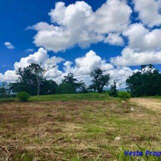 Land for sale – Las Lomas