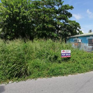 Mayaro Land, Close to Beach: $450,000.00