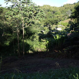 Belmar Trace, Buccoo, Tobago Land for Sale